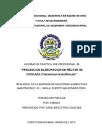 Informe de Practicas Preprofesionales 2 Elaboracion de Nectar de Copoazu de David Arocutipa
