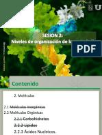 02. Niveles de organización de la materia II.pdf