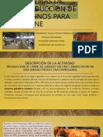Sistemas de producción de bovinos para carne.pptx