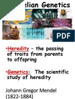Mendelian Genetics 8-M