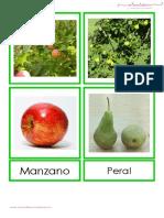 Frutas láminas vocabulario