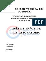 1560980894724_ESQUEMA  GUIA  PRACTICA.docx