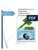 GUÍA_PRÁCTICA_N°12