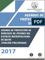 Agenda de Protección de Derechos de Jovenes Final-compressed