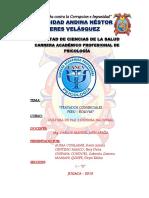 Comercio Entre Peru - Bolivia Ensayo PDF