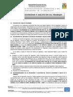PLAN DE SEGURIDAD DANTE NAVA.docx