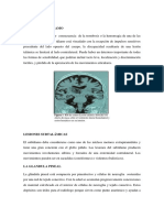 NOTAS CLÍNICAS DE CEREBRO.docx