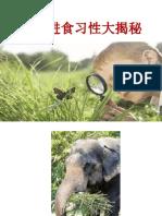 动物进食习性大揭秘.pptx