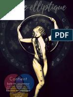 Porte elliptique « Un synoptique à facettes multiples » Version cristallisée (2009)