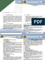 SEMANA 1-KENY-Resumen de la guía práctica para la formulación de perfiles de proyectos de saneamien.docx