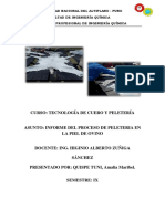 Informe del Proceso de Peleteria.docx