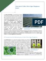 fotobioreactorparacultivomicroalgas-110908182807-phpapp02