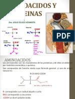 FIQ-AMINOACIDOS (1)