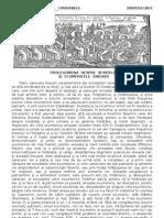 04 Sinodul I p 103-126