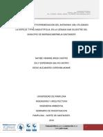 Proyecto Seminario de investigacion de fitorremediacion