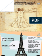 Tema 12-Anatomía Humana.concepto,Planos,Ejes y Terminología