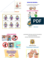 TRIPTICO NEMUNONIA ADULTO2.docx