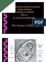 4. Nucleus