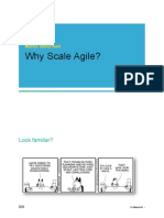 Why Scale Agile