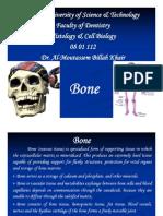 10._Bone