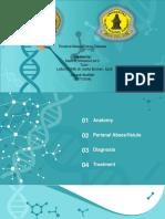 perianal abcess and fistula disease.ppt