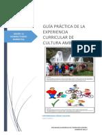 GUÍA_PRÁCTICA_12
