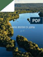 Paisagens Ancestrais Do Juruena, OPAN, 2019