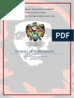 UNIVERSIDAD NACIONAL DE  SAN CRISTOBAL DE HUAMANGA.docx