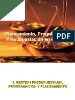 Planeamiento presupuesto Perú
