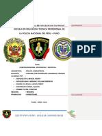 Comités Regional, Provincial y Distrital