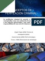 perfil criminologíco