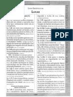 Bíblia DiNelson Lucas.pdf