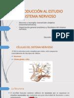 Introducción Al Estudio Del Sistema Nervioso