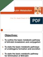 06 Bilirubin Metabolism016