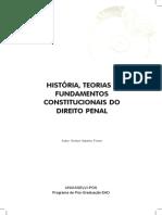 HISTÓRIA, TEORIAS E FUNDAMENTOS CONSTITUCIONAIS DO DIREITO PENAL