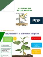 Nutricion en Las Plantas-beder