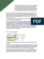 Sistema de información geográfica.docx