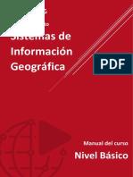 SIG BÁSICO - MASTER SIG.pdf