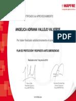 PLAN_PROT_RPTA_Certificado de curso