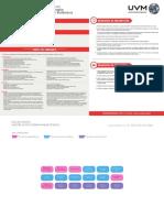 Maestria en Psicoterapia Familiar Sistemica Plan de Estudios 11072018