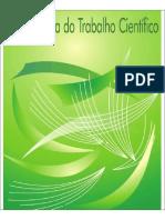 metodologia_do_trabalho_cientifico_1360073105.pdf