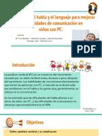 Seminario Neuro Infantil