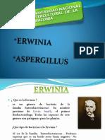 Diapositiva Raquel