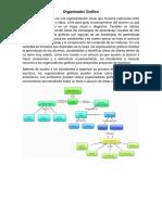Organizador Gráfico y Facturas Tipos