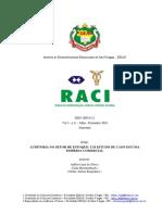 estudo de caso auditoria.pdf