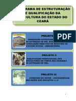 programa_estruturacao_qualificacao_apicultura.pdf
