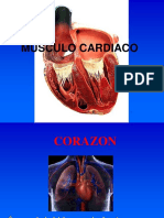 Sistema Cardiaco 2017