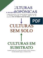 Morangos - r - d - Gustavo Nunes Scariot
