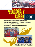 pedagogia-curriculo-roque-vargas-willean.pdf