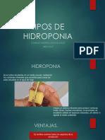 Tipos de Hidroponia